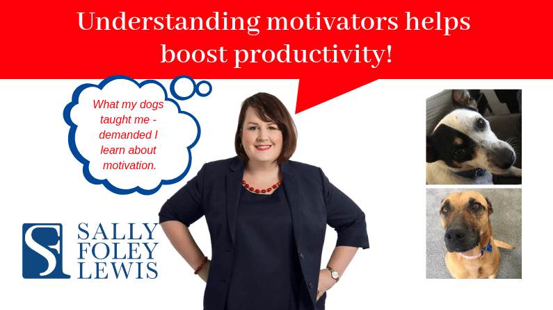 Understanding motivators helps boost productivity