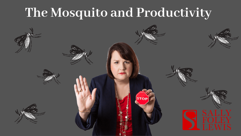 SFL Blog Header Mosquito and Productivity