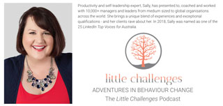 Little-Challenges