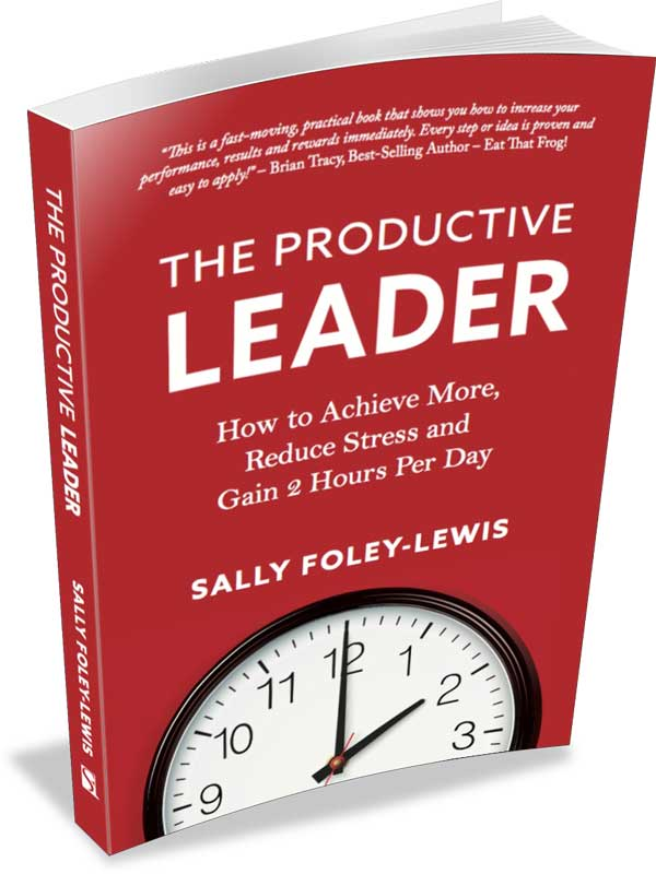 The Productive Leader Book